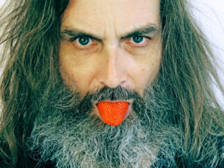 Tomás Přidal: Opice v zrcadle a jahoda s gilotinou