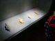 Archeopark Pavlov - expozice