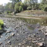 Moravské řeky mají málo vody, drobné toky vyschly. Snad pomůže déšť