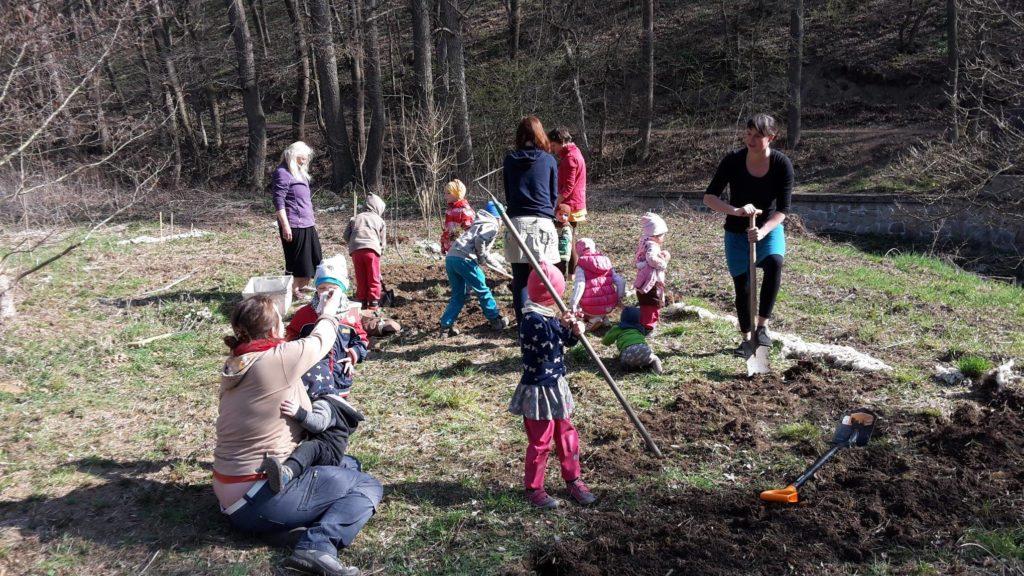 Příprava na výsadbu stromů
