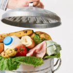 Mendelova univerzita zkoumá plýtvání potravinami. Na sídlištích lidé průměrně vyhodí přes 30 kg ročně