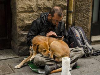 Bezdomovec se psem - ilustrační snímek