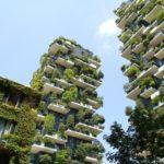 Brno chce vyzkoušet vertikální parky a zahrady. Pomohou snížit teplotu okolí