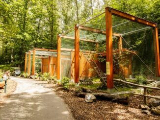 zoologická zahrada voliéry