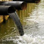 Nebezpečná látka v Bečvě se zastavila v Přerově. Tuny ryb otrávil kyanid