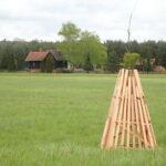V lužních lesích při soutoku Moravy a Dyje stát nově vymezí hranice pozemků. Usnadní tak péči o cennou lokalitu
