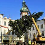 Vánoční stromy ozdobí náměstí Frýdku-Místku. Budou i stánky?