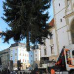 Olomouc zdobí vánoční strom, trhy mají naději. Zlín je ruší
