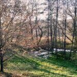 Ostrava chce v Krásném Poli vytvořit mokřad s učebnou pro venkovní vzdělávání