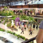 OBRAZEM: Olomoucká letní Flora přilákala více lidí než před pandemií